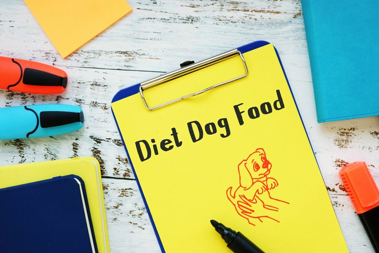 Guidelines to Choose a Healthy Dog Diet for Your Pet